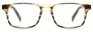 Angle of Grove in Olive Tortoise, Women's and Men's
