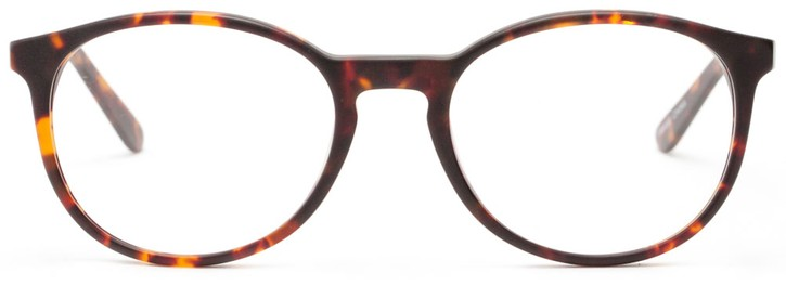 Angle of Scholar in Matte Tortoise + Bronze, Women's and Men's
