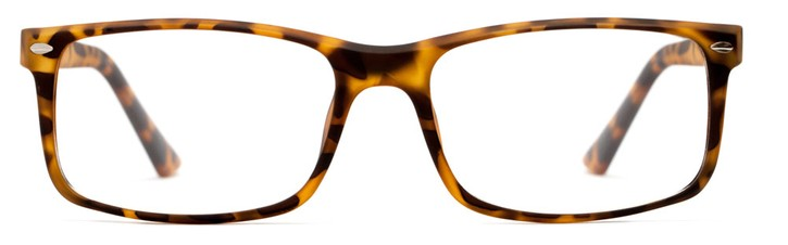 Angle of Shadeland in Matte Tortoise, Women's and Men's